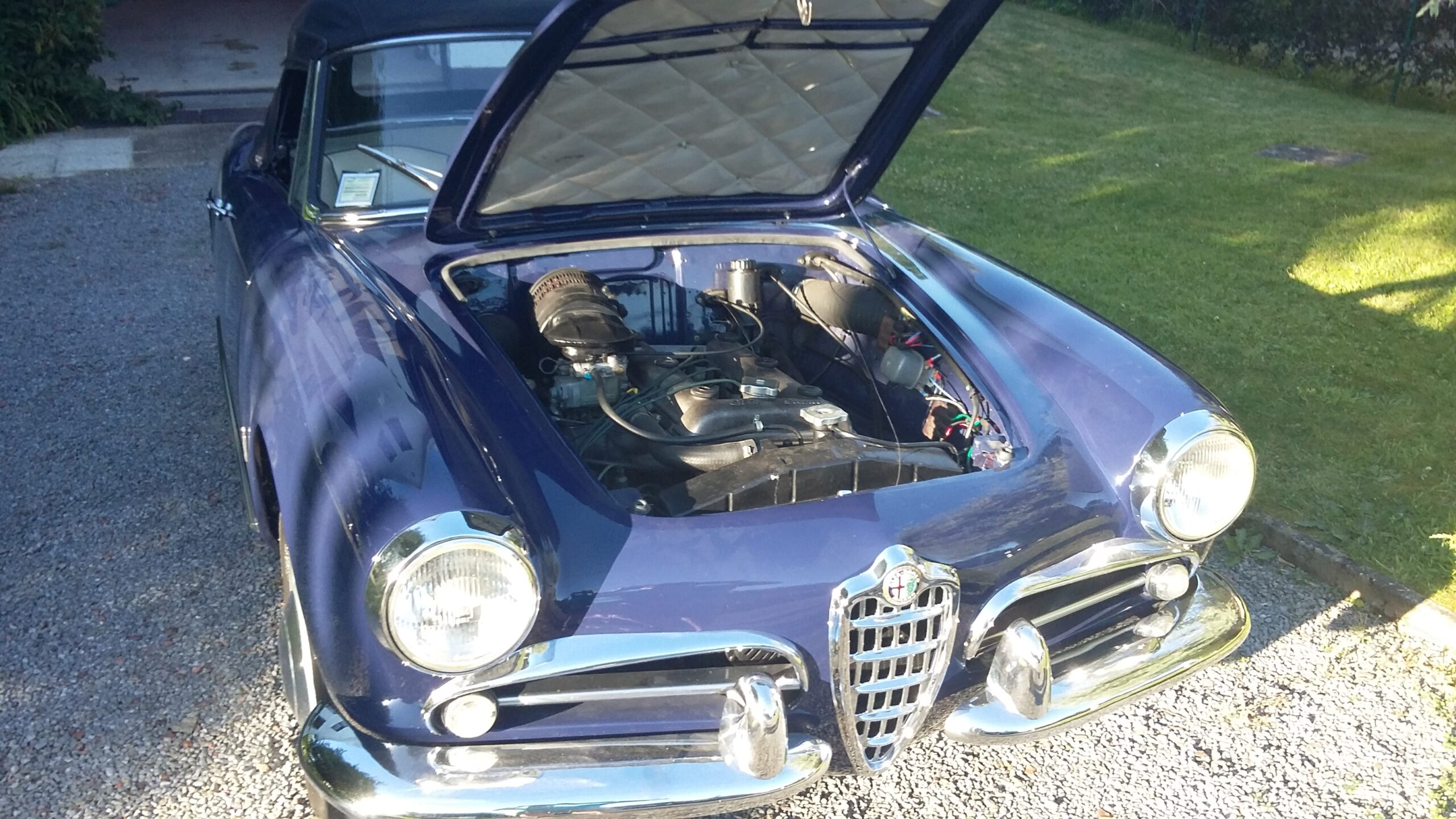 vue moteur et capot Alfa 1959